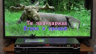 lG DKS-7100 - DVD-караоке система - демонстрация работы и внутреннее устройство