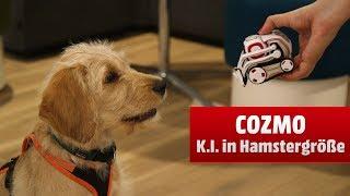 Cozmo - Künstliche Intelligenz zum Knuddeln