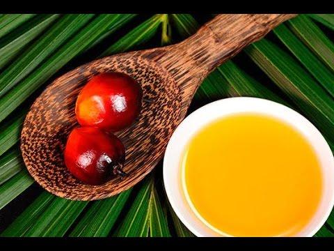 Пальмовое масло вред и польза для здоровья человека
