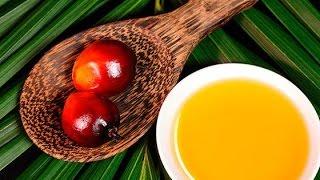 Почему вредно пальмовое масло?(Экзотический продукт с завораживающим названием «пальмовое масло» недавно вошёл в наши кулинарные рецепт..., 2016-03-07T14:40:17.000Z)