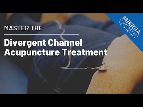Master The Divergent Channel Acupuncture Treatment, Pt. 2