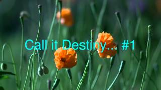 call it destiny #1