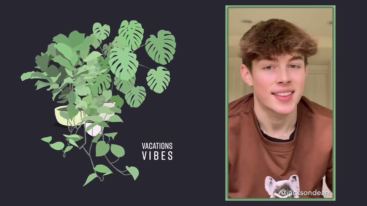 Vacations - Young (Knock Knock TikTok Compilation)