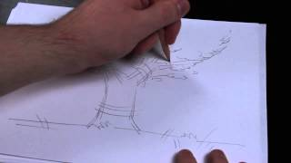 How to Draw a 3-D Tree for a Preschool Fall Theme : Art Education