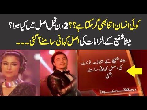 Real Story of Meesha Shafi Tweets About Ali Zafar
