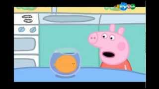 Свинка Пеппа Мультфильм