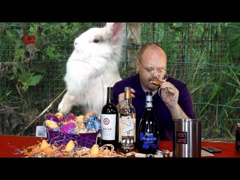 Easter Special 2012 - Episode #229
