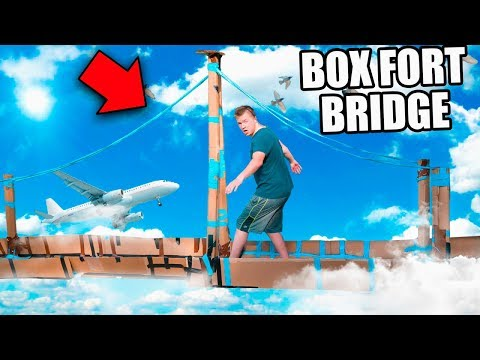 BOX FORT BRIDGE CHALLENGE!! 📦