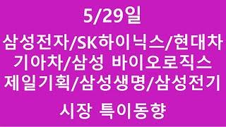 [주식투자]5/29일(삼성전자/SK하이닉스/현대차/기아…