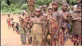 Documentales África: Pigmeos, La Lucha Gigante De Un Pueblo Pequeño