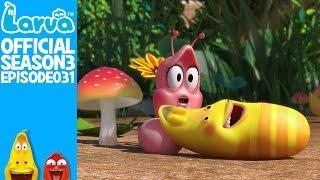 official pinks secret - larva season 3 episode 31