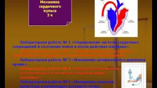 Презентация на тему Как связана физика и медицина
