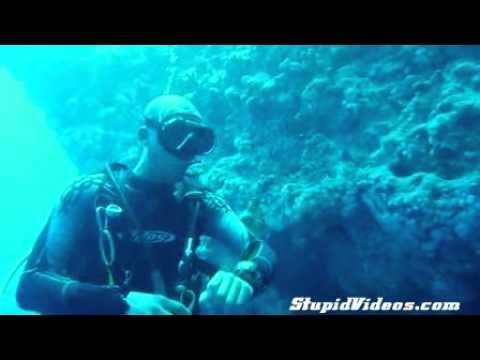Underwater Teeth Cleaning