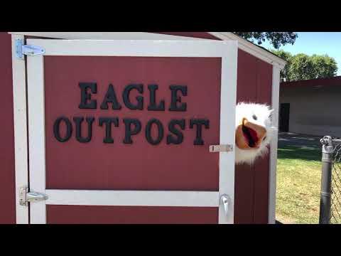 """Regal Eagle Mood"" Hart Ransom Elementary School"