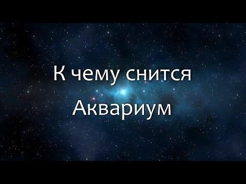 К чему снится Аквариум (Сонник, Толкование снов)