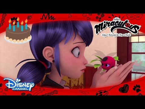 Mucize: Uğur Böceği ile Kara Kedi I Kwamiler'in Doğum Günü Partisi 🎂 I Disney Channel TR