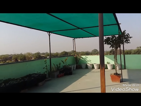 211# How to use Green net to Protect Overplants from Summer    Green Net लगाने का Idea