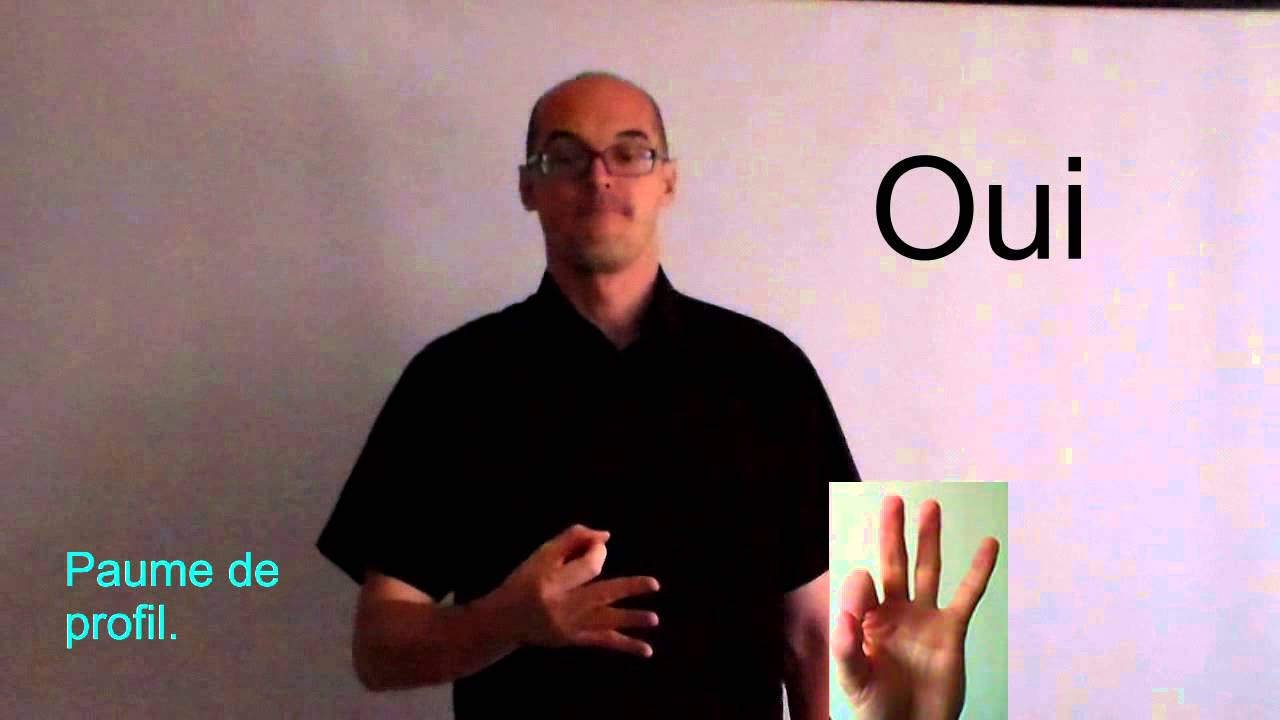 dire bonjour en langue des signes gb78