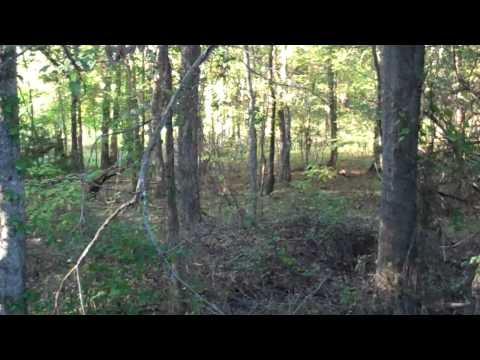 Bow hunting with Flip camera