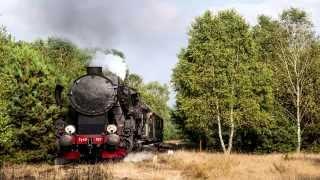 Dożynki Prezydenckie w Spale 2013 - Parowóz i pociąg specjalny