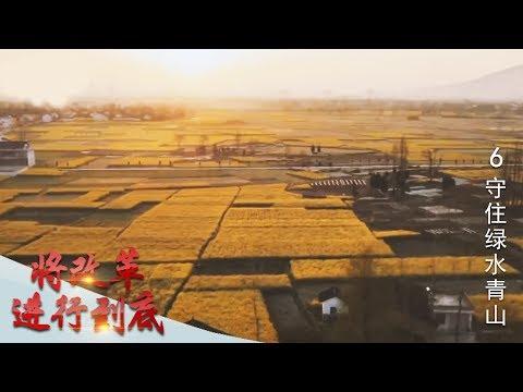 《将改革进行到底》 第六集 《守住绿水青山》 | CCTV