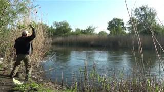 Фидер или поплавок Рыбалка с болонкой на реке