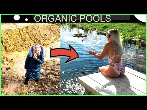 From Mud to Glory  - Remarkable Transformation to an Organic Pool