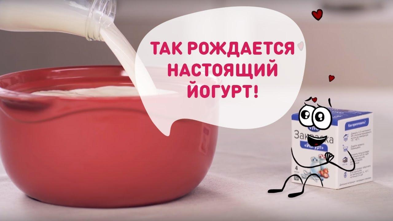 Молочные закваски БакЗдрав - YouTube