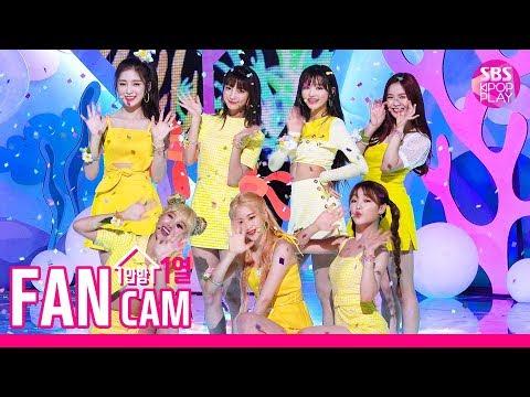 [안방1열 직캠4K] 오마이걸 'BUNGEE' 풀캠 (OH MY GIRL 'Fall in Love' FanCam)│@SBS Inkigayo_2019.8.11