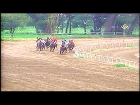 Jockey Club Rio Cuarto Carrera 11 11 De Mayo