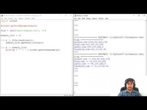 Domain to IP Bulk Lookup Tool - Python - Vault Domain