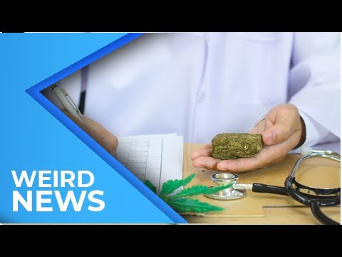 Weed Isn't Harmful To Anyone Because The World Health Organization Says So | Weird News 2018
