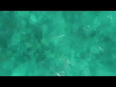 drone flight day three Belize
