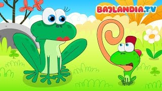 Była sobie żabka mała - Piosenki dla dzieci bajlandia.tv thumbnail