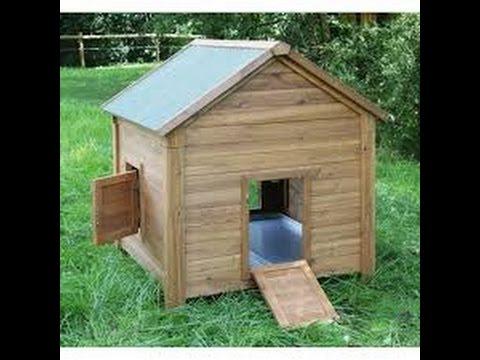 zuhause f r kleintiere und seidenh hner youtube. Black Bedroom Furniture Sets. Home Design Ideas