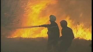 L'été des feux - 1 an après - reportage