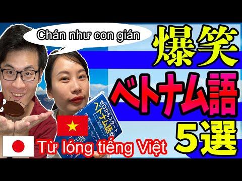 ベトナム人が99%笑ってくれる面白いベトナム語 Chán như con gián