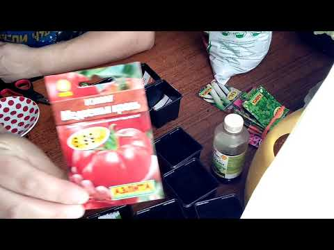 Сажаю томаты под рассаду//сорт Медвежья кровь//сорт Полным полно//Посмотрим что получится