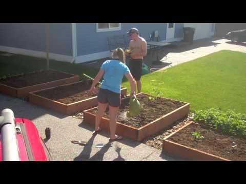 Planting A Western Washington Vegetable Garden in 3 Minutes