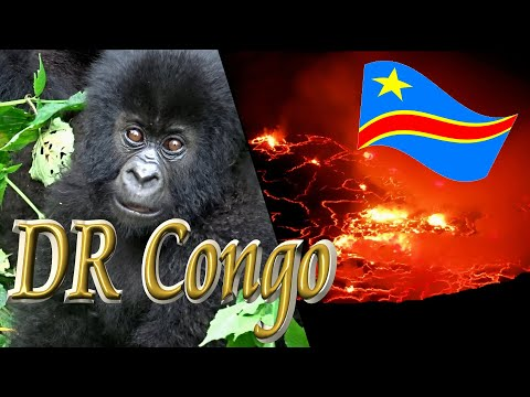 Hike to the Gate of Hell (Nyiragongo & Gorillas)