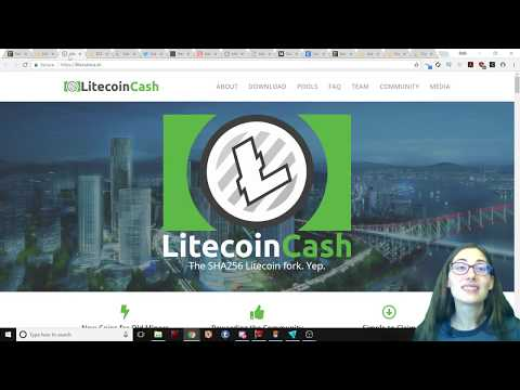 LitePay is Coming! More Merchant Options for Litecoin - Litecoin Cash is Forking Soon - Big Deal?