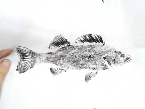 How To Make A Gyotaku Print