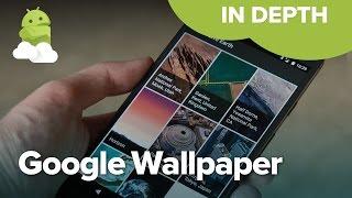 Google Wallpaper App on Google Pixel!