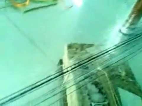 Làm Lưới bẫy chim Thái.(gia công tại Nhà)