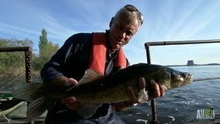 On the Hunt for Mutated Chernobyl Monsters | River Monsters