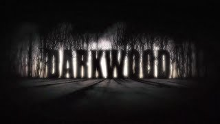 DARKWOOD - Download Game (Darkwood by Acid Wizard Studio 2017)