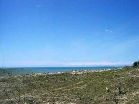 Land In North East Brazil For Beachfront Development Land - Hotels, Gated Neighborhoods