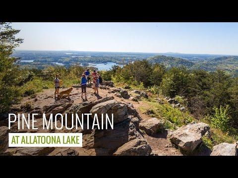 Pine Mountain Trail: hiking & trail running near Allatoona Lake