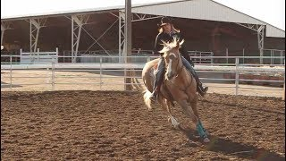 Q&A with Professional Barrel Horse Trainers Shelley Murphey, Kali Jo Parker, and Ashley Schafer