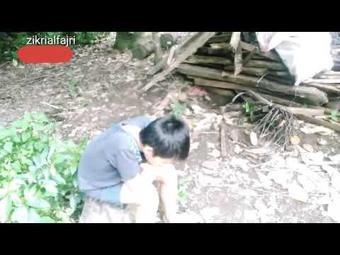 LAY LAY LAY JOKER PARODY (Music Cover Dj) Versi Anak Gaul